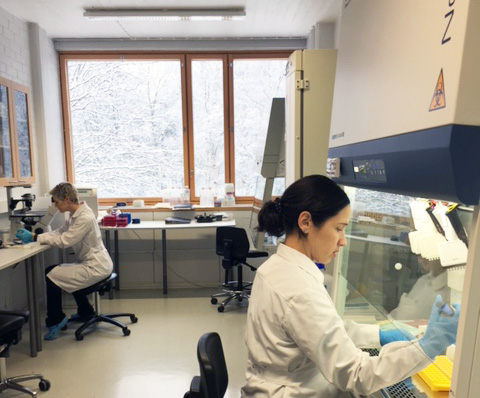 Katri and Marika working in the cell lab